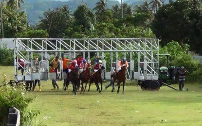 Lomba Pacuan Kuda Antar Sulawesi Meriahkan HUT Provinsi