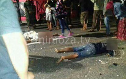 Akibat Kecelakaan Maut, 2 Warga Tewas di Tempat