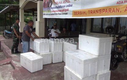 Balai Karantina Akan Musnahkan Ribuan Tikus Hasil Sitaan Di Pelabuhan Gorontalo