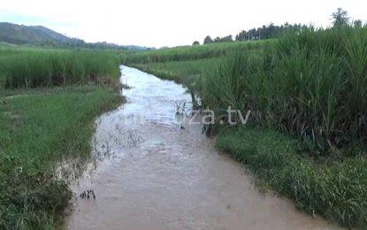 Dampak Bajir Wonosari, Warga Keluhkan Kondisi Sungai Yang Mulai Menyempit