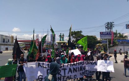 Mahasiswa Gorontalo Tuntut Jokowi Stop Impor Beras